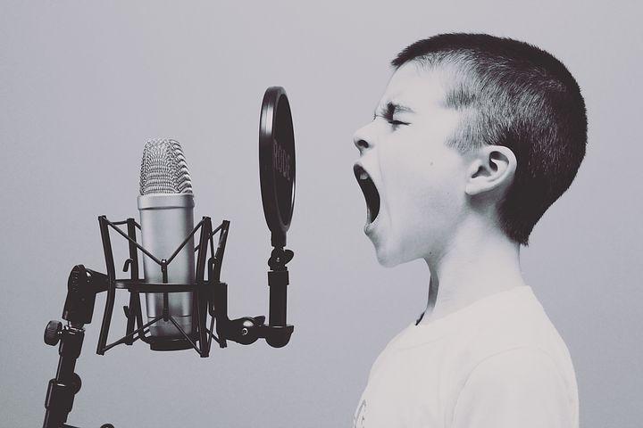 microphone-1209816__480.jpg