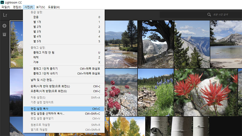 사진 조정 내용을 복사해 여러 장의 사진에 한 번에 적용할 수 있다