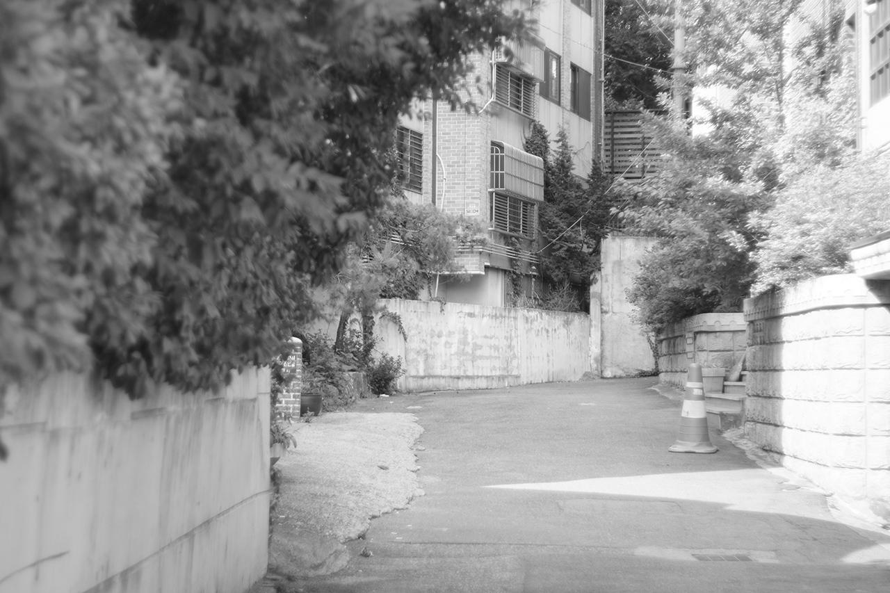 초점거리 50mm 수동 렌즈(슈나이더 에딕사-제논 f/1.9)로 촬영한 이미지. 초점 잡기가 쉽지 않지만 적응되면 촬영의 재미가 있다.