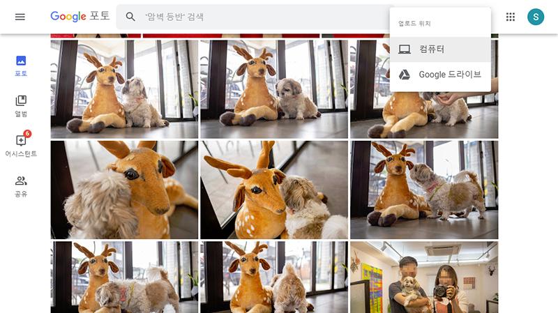 구글 포토를 통해 사진을 업로드한다. 컴퓨터나 구글드라이브, 스마트폰에서 가능하다.