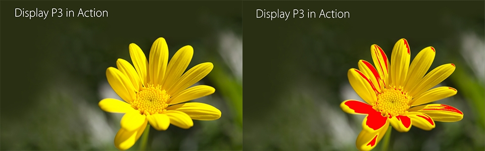 ▲ sRGB가 표현해 내지 못하는 영역이 붉게 표시되어 있다. 즉, Display P3에서는 숨어 있는 더욱 많은 노란색을 볼 수 있다는 의미. (출처 : 애플 'Working with Wide Color' PT 자료 중)
