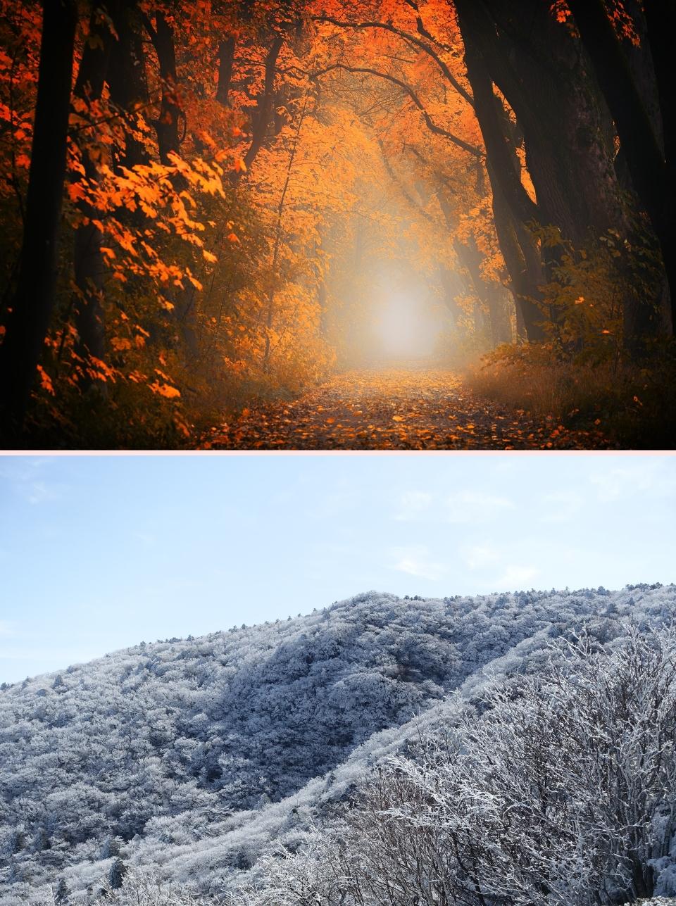 가을, 겨울여행 나만의 추억을 만들어 오랫동안 간직해 보면 어떨까요? (사진=픽사베이)