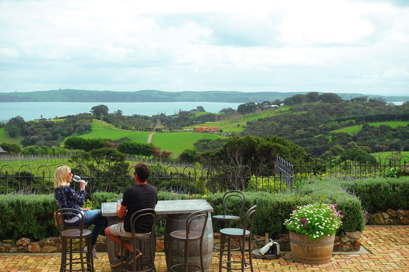 와이헤케섬의 머드브릭 레스토랑 & 빈야드. 테라스에 앉으면 앞으로 펼쳐진 바다와 뒤로 이어지는 포도밭이 잠시 내 것처럼 여겨진다