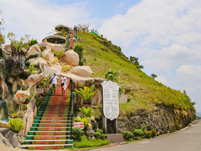 초콜릿 힐. 214개의 계단을 오르면 솟아오른 언덕들이 한눈에 보인다