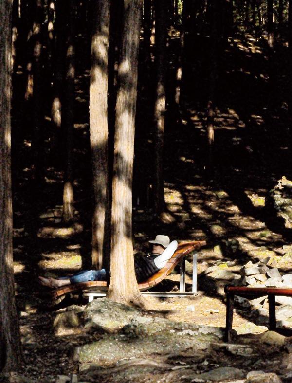 편백나무 숲 쉼터는 모두에게 열려있다
