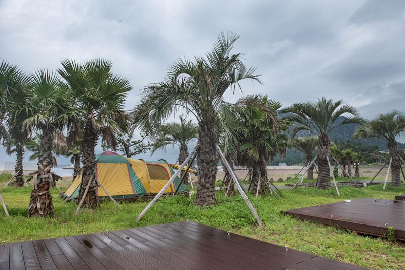 가족캠핑에 적합한 화순리 금모래 캠핑장