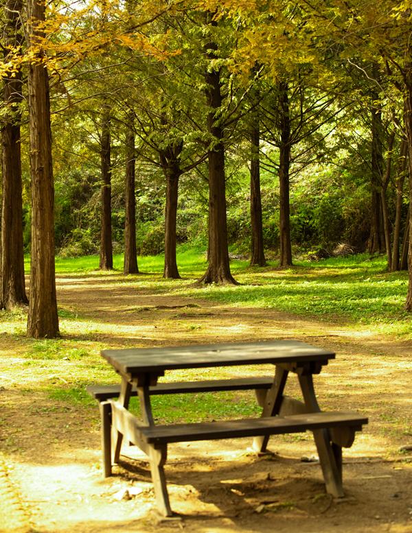 곳곳에 자리한 테이블과 의자