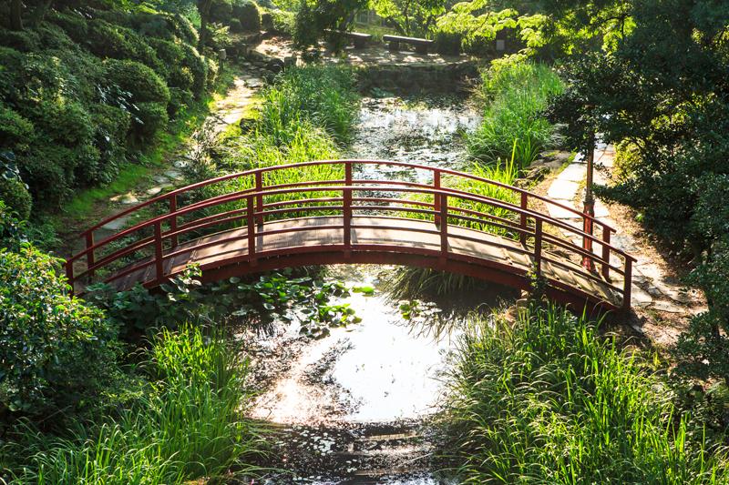 아담한 연못과 너른 들판이 펼쳐진 수생식물원