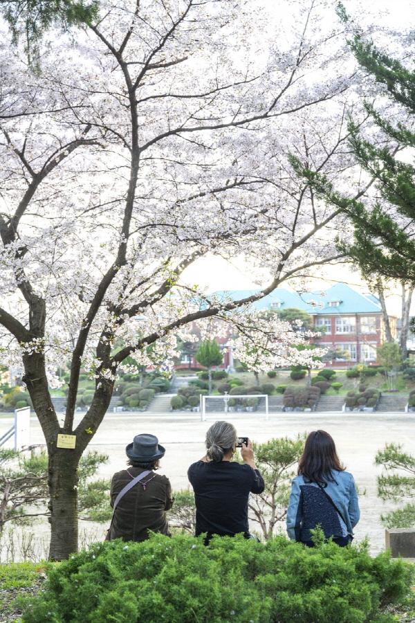 벚꽃 만발한 날의 수피아여고. 소녀들은 광주 3·1만세운동에 앞장섰었다고