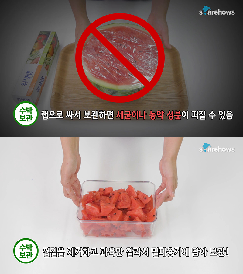 watermelon-tips 01