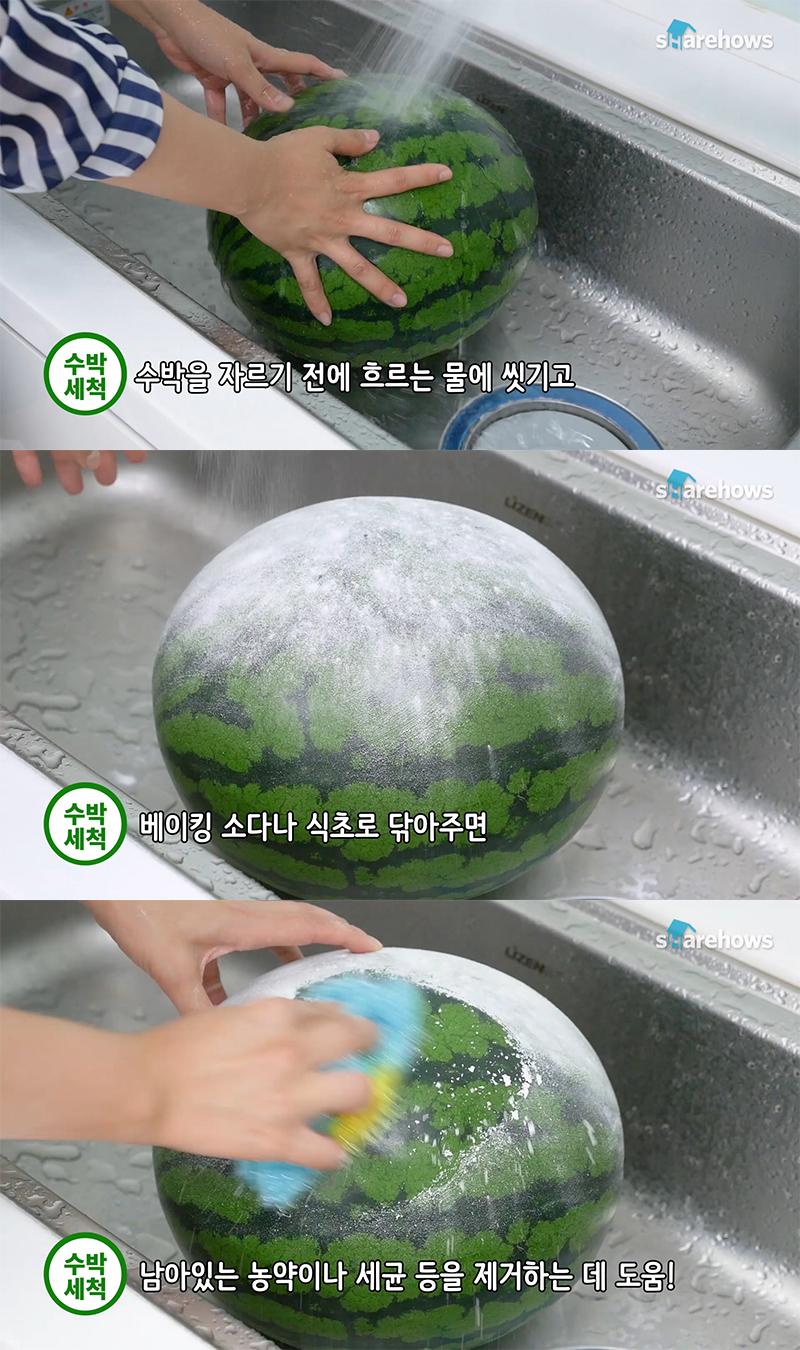 watermelon-tips 02