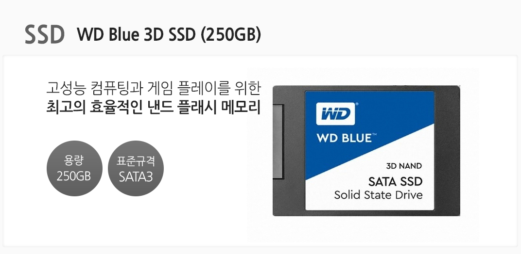 SSD WD Blue 3D SSD (250GB) 고성능 컴퓨팅과 게임 플레이를 위한 최고의 효율적인 낸드 플래시 메모리 용량 250GB 표준규격 SATA3