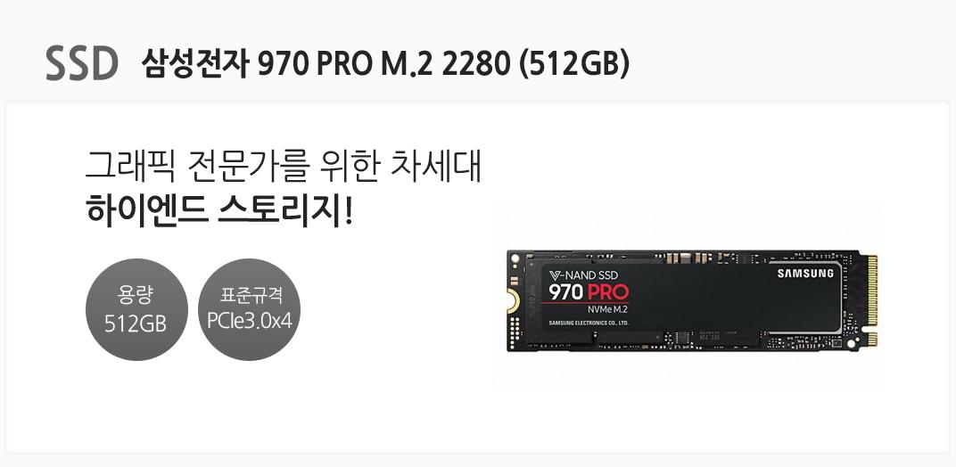 SSD 삼성전자 970 EVO M.2 2280 (512GB) 그래픽 전문가를 위한 차세대 하이엔드 스토리지! 용량 512GB 표준규격 PCle3.0x4