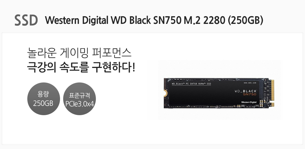 SSD Western Digital WD Black SN750 M.2 2280 (250GB) 놀라운 게이밍 퍼포먼스 극강의 속도를 구현하다 전송 용량 250GB 표준규격 PCIe3.0x4