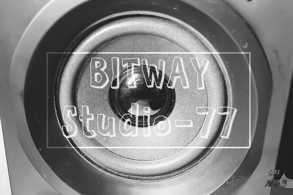 BITWAY Studio-77 ����