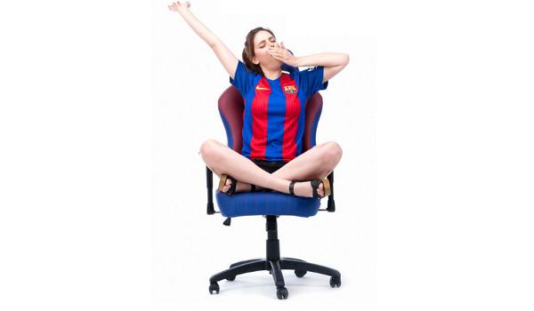게이밍 기어, '의자' 도 있다!