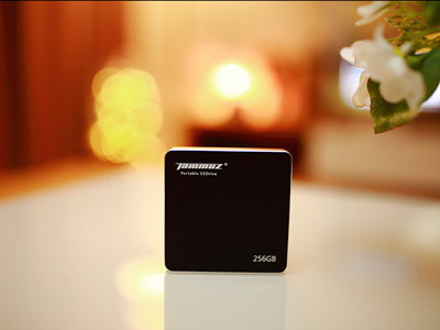 SSD를 휴대하다! 타무즈 EX2 SSD 256GB 사용기