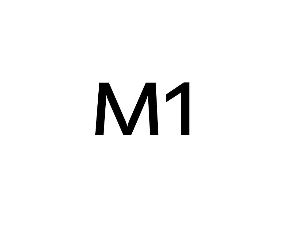 아이구주 M1 타이푼 RING LED & 강화...