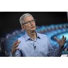 애플 팀쿡 CEO,