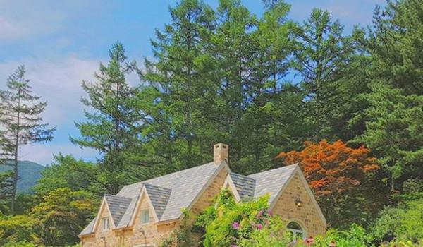 피톤치드 뿜뿜 힐링되는 수목원
