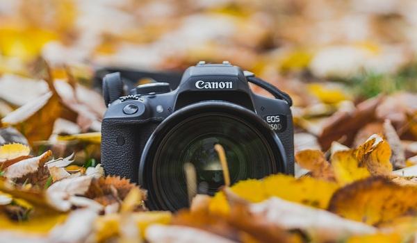 가을 사진 출사지, 어디가 좋나?