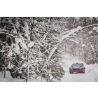 미쉐린타이어, 현대차 레이싱팀 WRC 우승 이끌어