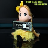 SSD / SSD 추천 마이크론 Crucial MX500 M.2 2280 대원CTS (250GB)(소개편)