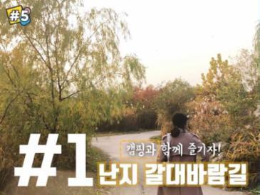 [#5] 겨울 오기 전 꼭 가야 할 가을 산책길 BEST 5
