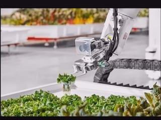 로봇농부가 경작하는 농장 'Iron Ox'