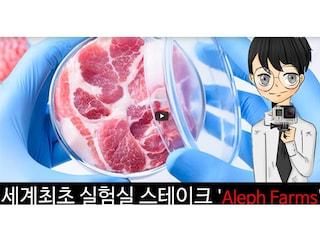 세계최초 실험실 스테이크 'Aleph Farms'