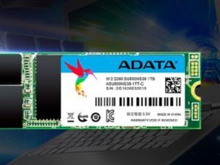 [낙찰 공개] ADATA Ultimate SU800 M.2 2280 STCOM (256GB)
