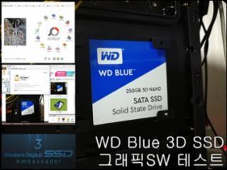 반복작업에도 탁월한 성능 Western Digital WD Blue 3D SSD (250GB)