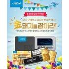 아스크텍, 마이크론 Crucial 2019년 황금돼지해 기념 SSD 구매고객 대상 스크레치 복권 이벤트