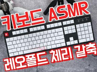 [ASMR] 레오폴드 FC900R (체리 갈축) 키보드 치는 소리 [키덕키덕]
