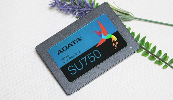 ADATA SSD는 역시 가성비지!