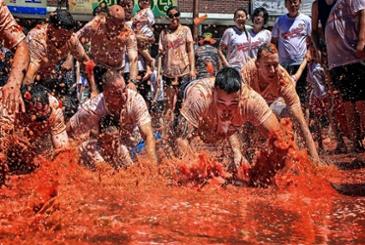 빨갛거나 파랗거나, 8월 국내축제