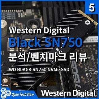 WD Black SN750 NVMe SSD 분석/벤치마크 리뷰