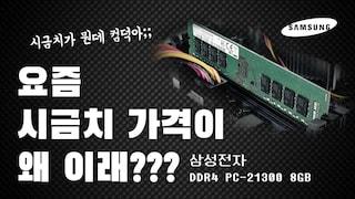 요즘 시금치 시세가 왜이래? (feat.삼성전자 DDR4 PC-21300 8GB) [가격동향 영상]