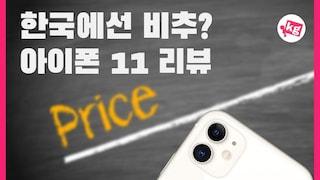 아이폰 11 리뷰: 한국에서는 비추?? [4K]