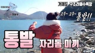 거제도 구조라해수욕장 통발에 무려 자리돔 미끼를.. 과연! fishing aing2 [여자 낚시꾼 아잉2]