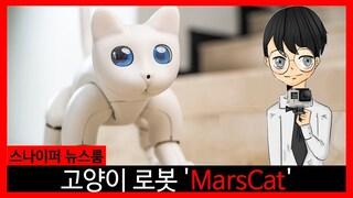 고양이 로봇 'MarsCat' [스나이퍼 뉴스룸]