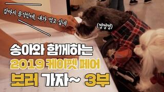 [특집]송아와 함께 2019 케이펫 페어 보러가요!  3부