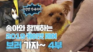 [특집]송아와 함께 2019 케이펫 페어 보러가요!  4부