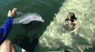 강사님만 믿으면 수영 금방 배워요