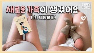 [출산브이로그] Birth vlog | 생생 제왕절개 후기 | 실시간 기록