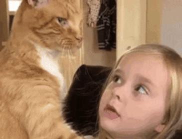 고양이와 소녀