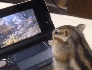 영화보면서 혼밥하는 람쥐
