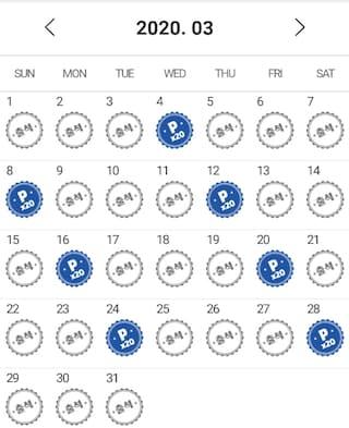 3월 개근과 함께 연속출첵 365일 달성!