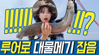 루어로 대물메기 잡음!!!!!!!!!!! Catching a large catfish with bait