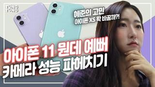 아이폰11 카메라 성능에 초점, 갤럭시노트10과 비교, 아이폰11에는 없는 것(iphone11,galaxy note10)